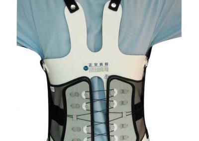 複合式樹脂泰勒背架